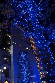 _IGP7742_ShibuyaBlue_Light720.png