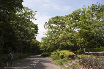 _IGP8716_shinnarashino720.jpg
